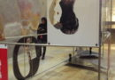 Ercolano, la mostra Expanded Interiors conclude il progetto annuale di valorizzazione Maiuri Pop Up